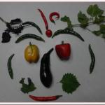 家庭菜園ベランダで簡単に野菜を育てる方法は?